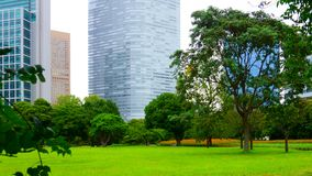 Large and attractive landscape garden in Tokyo. Japanese garden on the background of modern buildings. Large and attractive landscape garden in Tokyo. Japanese royalty free stock photos