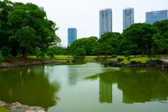 Large and attractive landscape garden Tokyo. Japanese garden on the background of modern buildings. Large and attractive landscape garden in Tokyo. Japanese stock image