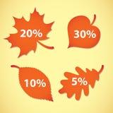 Large Autumn sale. Vector illustration. Set Stock Photos