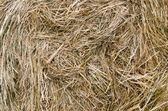 Large bail of hay Royalty Free Stock Photography