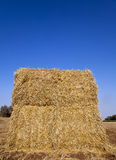 Bale of Hay in a Field. A large bale of hay located in the field it grew in Stock Images