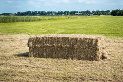 Large bale of hay on a sunny day Royalty Free Stock Photo