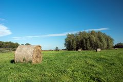 Large bale of mown hay lying on a green meadow, copse and white cloud on a blue sky royalty free stock photography