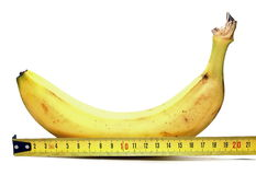 Large banana and measuring tape on white background, such as man`s large penis, big size Stock Photography