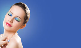 Large banner with makeup beauty. Royalty Free Stock Photo