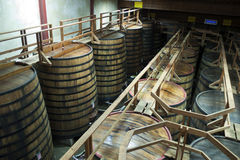 Large barrels in wine cellar Royalty Free Stock Photos