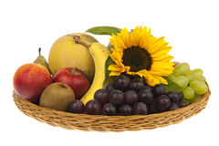 Large basket of fruit with sunflower Royalty Free Stock Photos