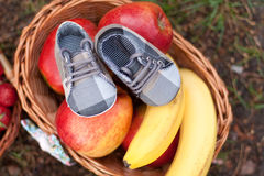 Large basket with fruits and shoes on green grass. Large basket with fruits on green grass stock image