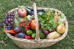 Large basket full of fruit and vegetables Stock Photography