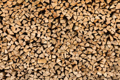 Large beech wood pile Stock Images