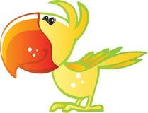 Large Beek Bird Parrot Stock Photos