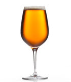 Large beer goblet chilled Stock Photos