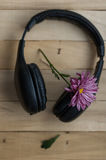 Large black headphones and purple flower. On a wooden background stock images