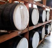 Large black wooden barrels for storage of beverages grouped in a cellar shelf stock photography