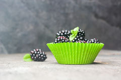Large blackberries in the form for a cupcake made of paper. Stock Photography