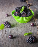 Large blackberries in the form for a cupcake made of paper. Royalty Free Stock Photos