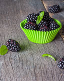 Large blackberries in the form for a cupcake made of paper. Royalty Free Stock Images