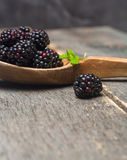 Large blackberries in an old wooden spoon. Stock Image