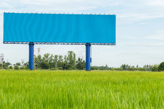 Large blue advertising billboard in green rice field. for design Royalty Free Stock Photo