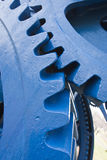 Large blue cogs. Three large blue cogs from an old set of industrial rollers Royalty Free Stock Photo