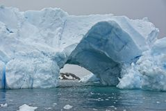 Tunnel Formed in Blue Antarctic Iceberg. This large blue iceberg has a passage or tunnel through it, showing the mountain in the background royalty free stock photos