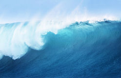 Large Blue Surfing Wave royalty free stock photography