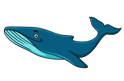 Large blue whale mascot. With a happy smile swimming underwater, cartoon illustration Royalty Free Stock Photo
