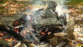 A large bonfire burns in the open air. Old paper lies in flames and turns to ashes. Thoughts, the past, backgrounds.