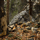 Large boulder Stock Photos