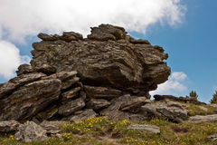 Large Boulder on Chief Mountain, Colorado Stock Image
