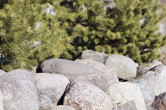 A large boulder in the sun,background Stock Photos