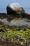 Large Boulder in Water Stock Photography