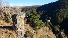 Large boulders, stones and coniferous forest. Panoramic view of the Avatar Mountains in the Caucasus. Travel