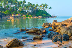 Large boulders and tall palm trees on the shore Royalty Free Stock Image