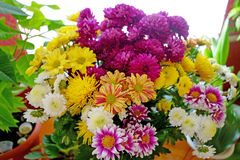Large bouquet of beautiful flowers Stock Images