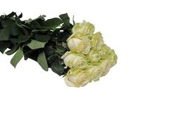 A bouquet of flowers on a white background. Isolated image. Large bouquet of flowers on a white background Stock Photo