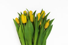 Large bouquet of fresh yellow tulips, isolated on white backgrou. Nd Royalty Free Stock Photo