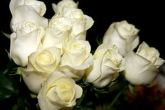 Large bouquet of white roses Stock Photography