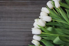 A large bouquet of white tulips Stock Images