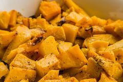 Freshly baked pumpkin butternut for catering at a corporate even. Large bowl of freshly baked pumpkin butternut for catering at a corporate event gala dinner Royalty Free Stock Photography