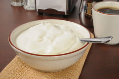 Bowl of plain yogurt Royalty Free Stock Photography