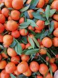 Fresh mandarins with green leaves stock photo