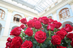 Large bright bouquet of red roses in hall Stock Image
