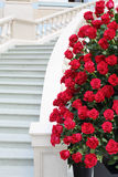 Large bright bouquet of roses near staircase. Stock Photos