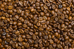 Coffee beans background. Large brown coffee beans scattered on the desktop Stock Photography