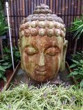 Large Buddha Head Royalty Free Stock Photos