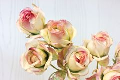 Large buds of pink and white roses. Artificial silk flowers in t. Large buds of pink and white roses. Artificial silk flowers at the interior Royalty Free Stock Photos