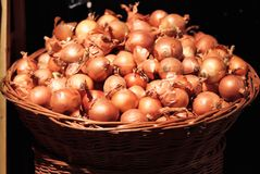 Onions in large wicker basket. Large bulbs of onions. Many onions in a large wicker basket. Vegetables for a healthy diet. Basket with onions on black background stock image