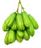 Large bunch of Bilimbi fruits Royalty Free Stock Images