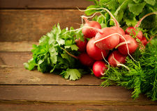Large bunch of fresh Organic vegetables, radish and greens on old wooden table. Large bunch of fresh Organic vegetables, radish on old wooden table, closeup Stock Photos